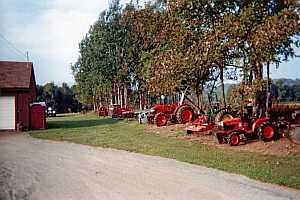 Asack & Son Christmas Tree Farm & Christmas Tree Seedlings and ...