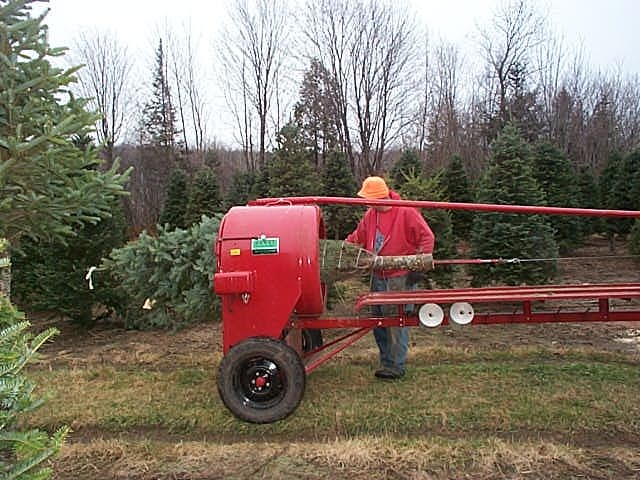Wholesale Christmas Trees Getting Baled with Howey Baler ...